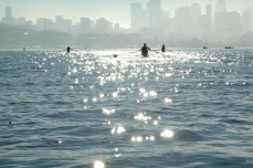 rowers on Lake Union